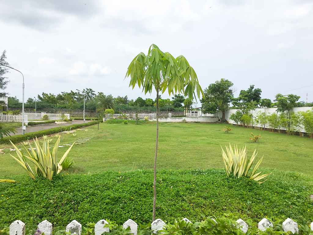 luxury villas for one day rent in ecr