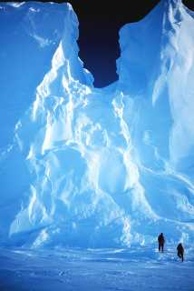 Top 5 Reasons to Antarctica once in a Life, Voyager of Antarctica