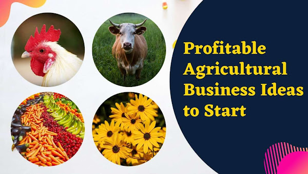 top 10 agricultural business ideas in india