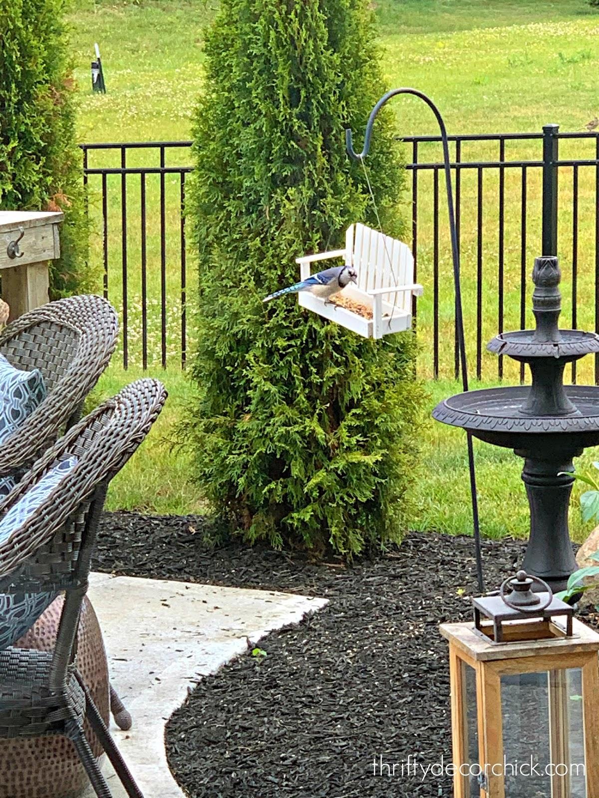 Adirondack chair bird feeder