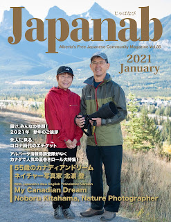 Japanab Vol. 35 - 2021 January