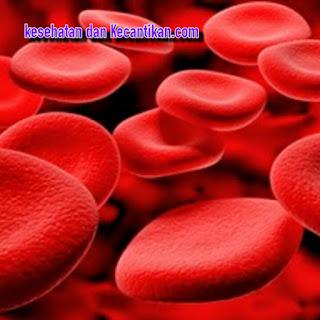 Cara terbaik mengatasi gejala darah kotor secara alami
