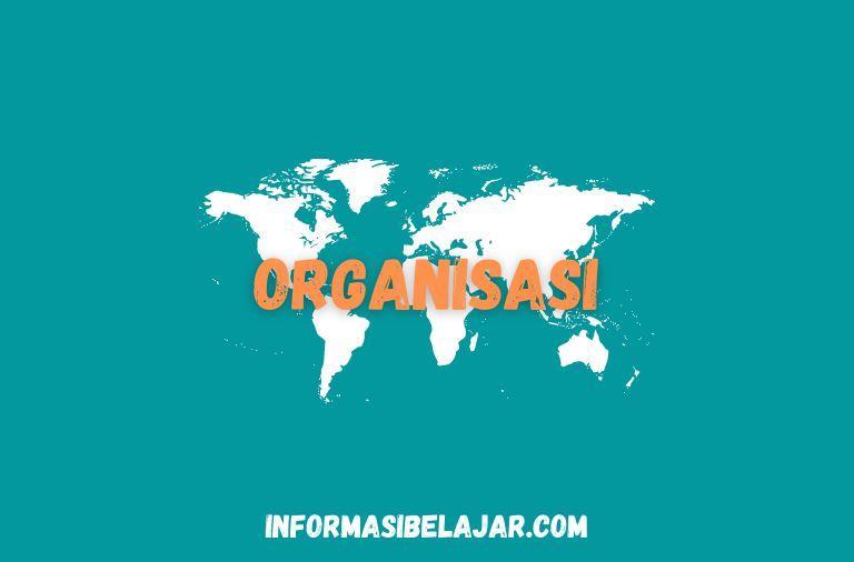 Pengertian dan Ciri ciri Organisasi