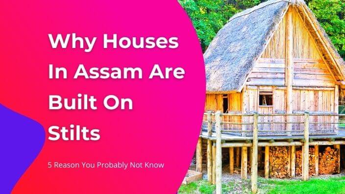 5 Reason You Probably Not Know about the houses of assam