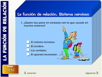 http://primerodecarlos.com/CUARTO_PRIMARIA/enero/Unidad7/actividades/naturales/activi_repaso2.swf
