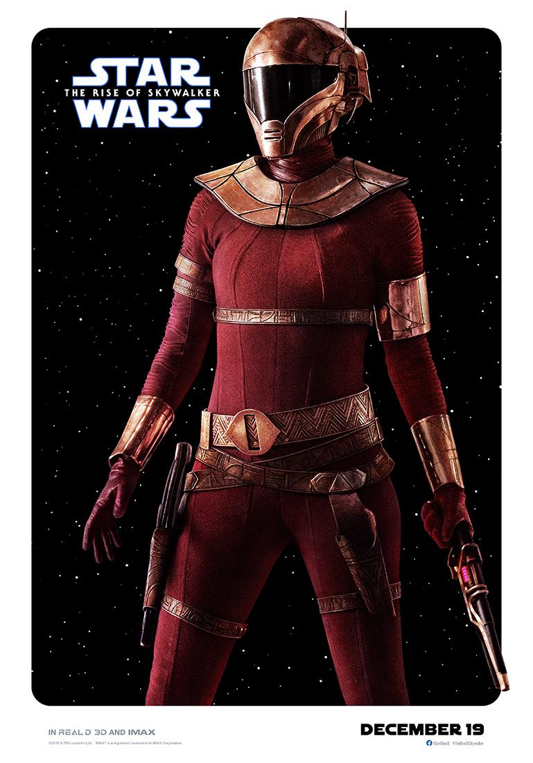 Star Wars: The Rise of Skywalker zorri poster