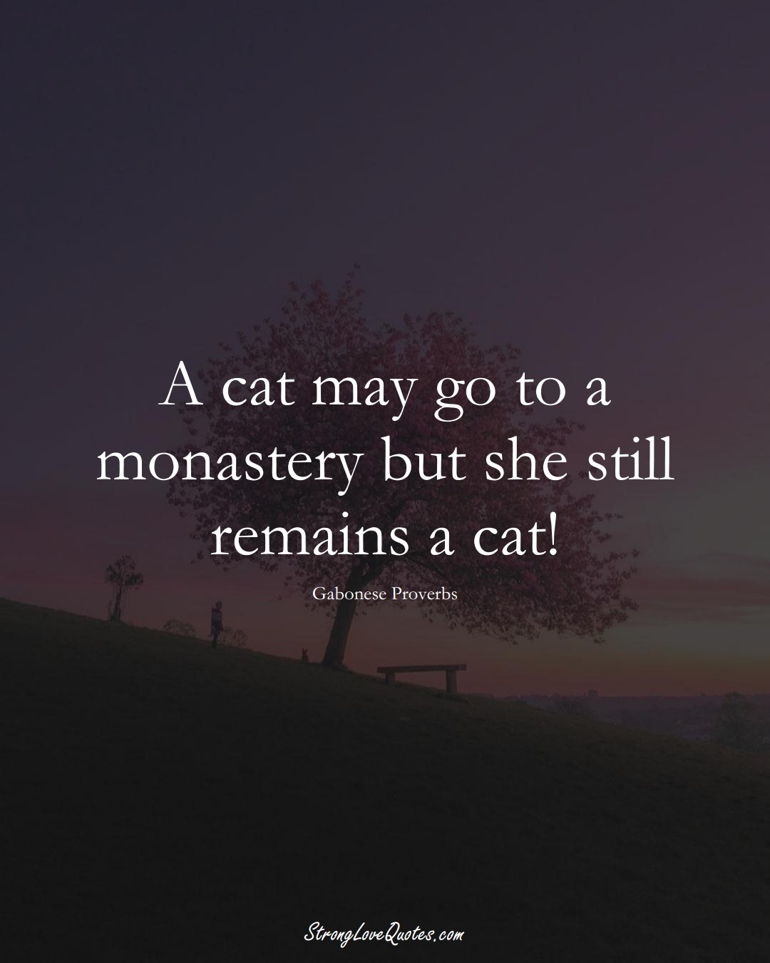 A cat may go to a monastery but she still remains a cat! (Gabonese Sayings);  #AfricanSayings