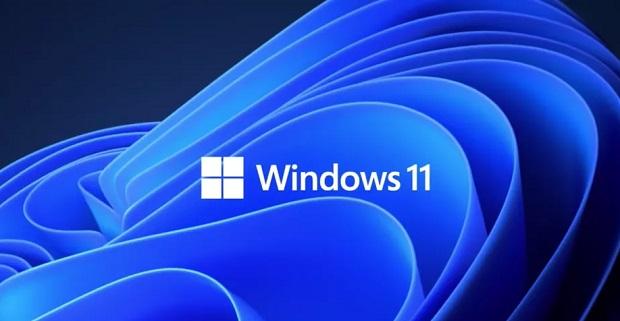 تطبيق Why not Windows 11