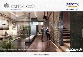 capital cove bsd