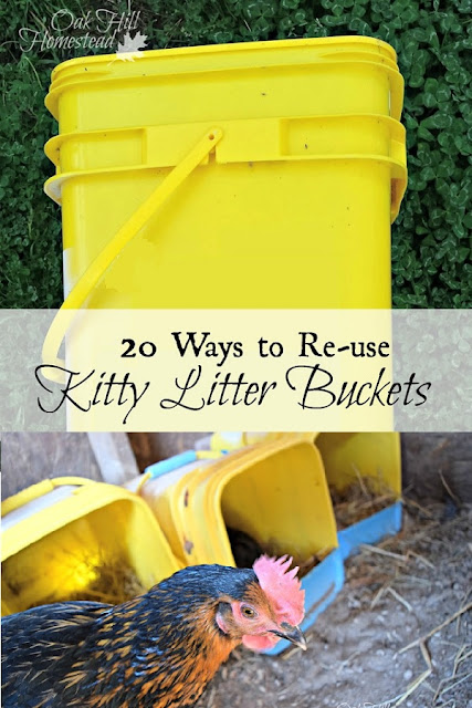If you have indoor cats, you use cat litter. What do you do with all those containers and jugs and buckets? Well, they are very handy around your home, garage and garden! Discover 20 ways you can re-use kitty litter buckets. Share your ideas too!  #upcycle #recycle #cats #garden #homestead