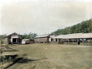 permukiman pekerja dari jawa di perkebunan batang toru