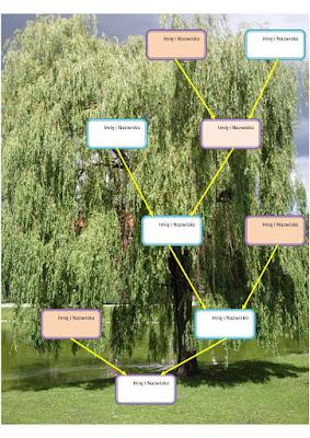 przykład jak zaprojektować wzory drzew genealogicznych