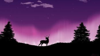 Deer, Night, Scenery, Minimalist, 8K, #6.2169