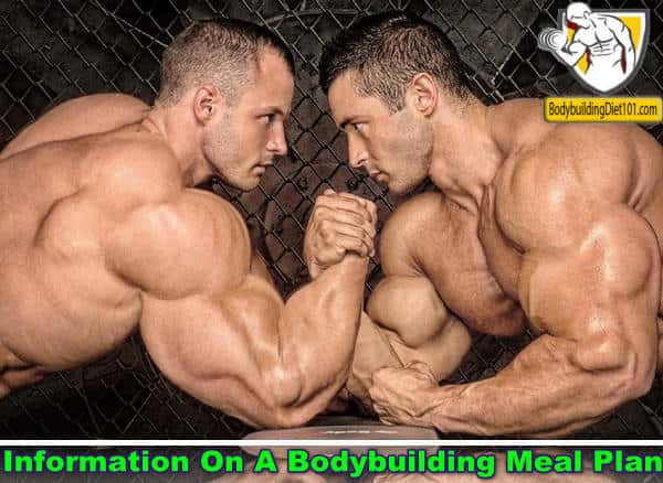 If you want to get a quality bodybuilding meal plan then you need to understand the different aspects of nutrition