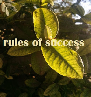 two rules of success in life, rules of success quotes, rules of success book, rules of success in hindi, golden rules for success in life, rules for success in school, rules for success in business, personal rules for success