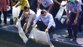 KKP Lepasliarkan 215 Ekor Ikan Dilindungi