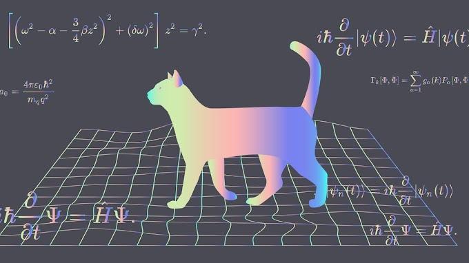 Schrödinger'in Kedisi Deneyi