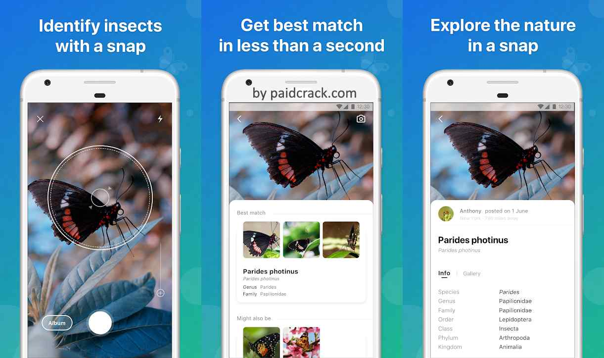Picture Insect - Bug Identifier Premium Mod Apk 2.0