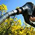 Se decide hoy ingreso de biodiésel a EE.UU. (DiarioBae)