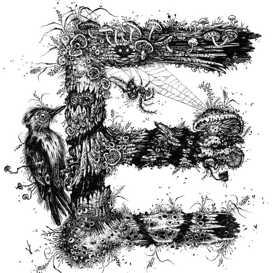 06-E-Woodpecker-and-spider-Monika-Mitkute-www-designstack-co