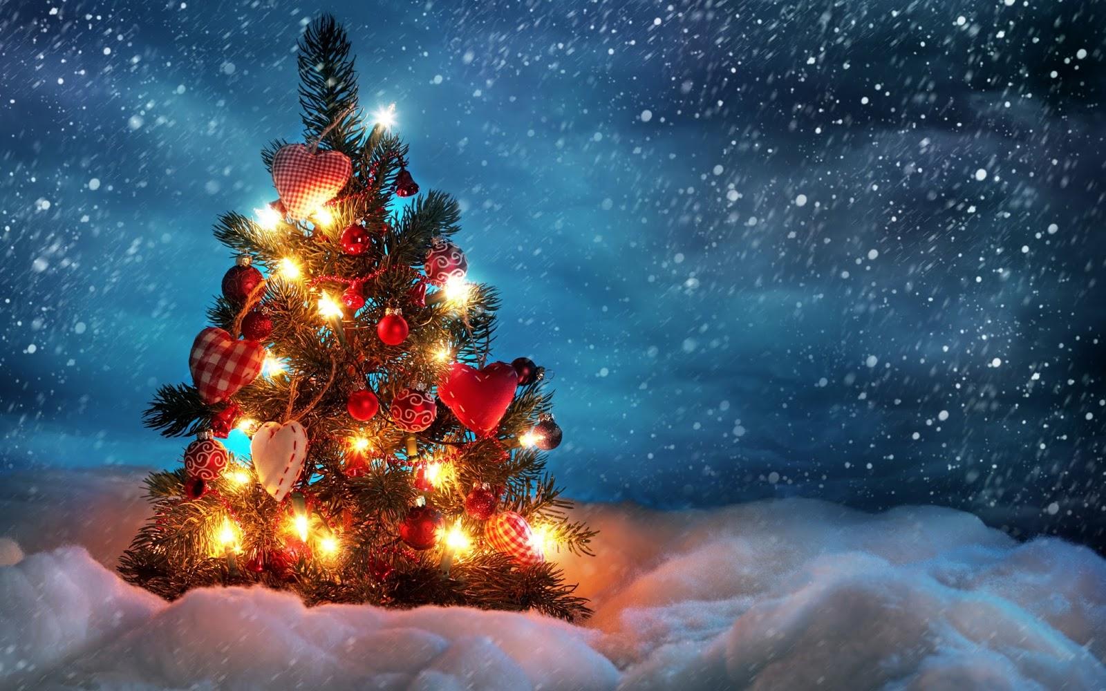 Cuál Es El Verdadero Significado Del árbol De Navidad Isla De