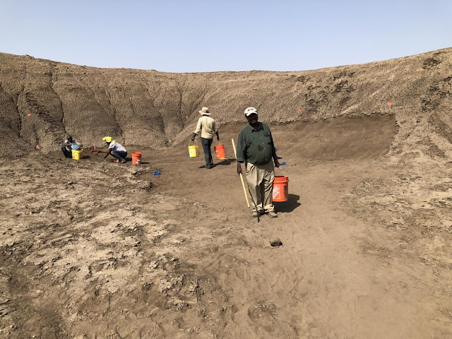 New archaeological sites discovered at Gona, Ethiopia