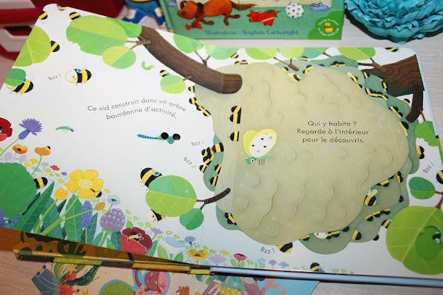 livre sur les insectes