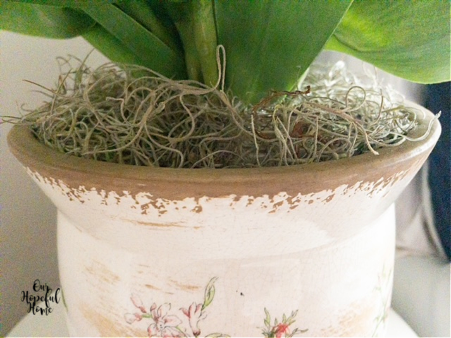 dried moss painted cache pot