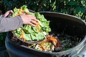Se desperdicia 17% de todos los alimentos disponibles a nivel del consumidor, según nuevo informe de la ONU