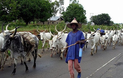 Fulani herdsmen1 696x441 - Police arrests violent Fulani herdsmen in Benue State