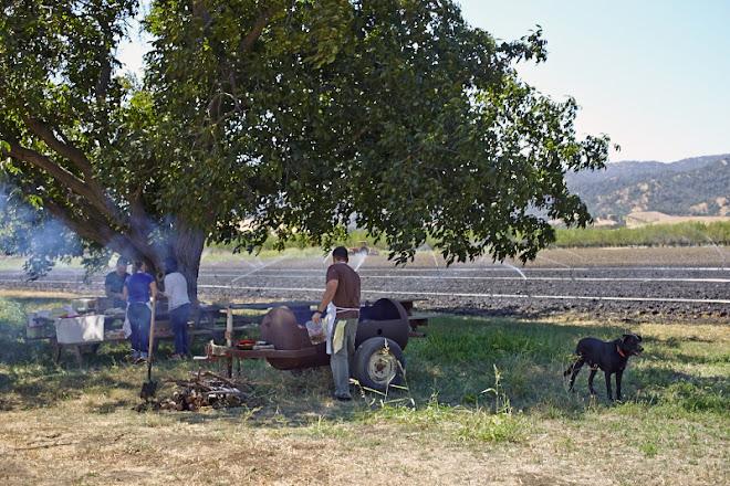 Nopalize Seasons at Riverdog Farm {photo © Julia Spiess 2014}