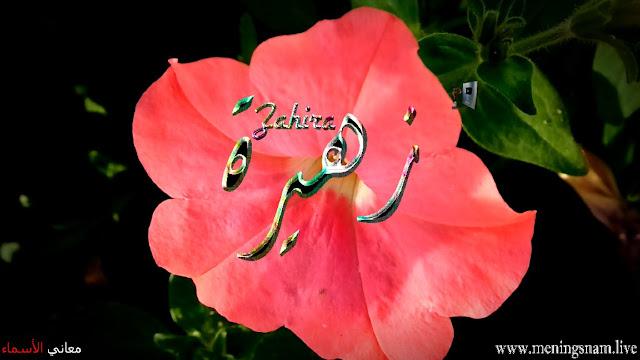 معنى اسم زهيرة وصفات حاملة هذا الاسم  Zahira