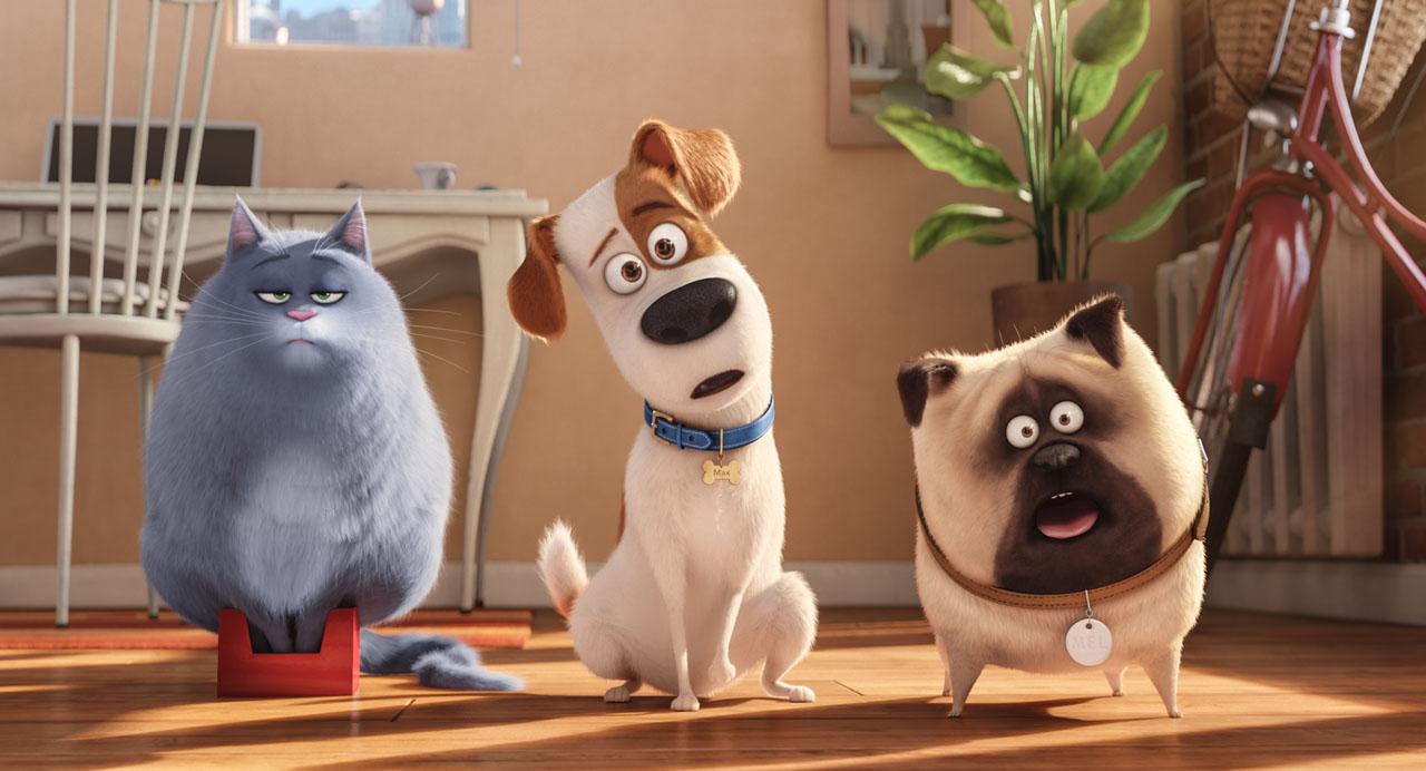 Estreias da semana (25/08): Pets - A Vida Secreta dos Bichos, Águas Rasas, Nerve – Um Jogo Sem Regras & Café Society