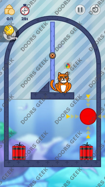 Hello Cats Level 29 Solution, Cheats, Walkthrough 3 Stars for Android and iOS