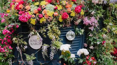 El poder de las plantas y los jardines se celebrará con el regreso de los festivales de la RHS