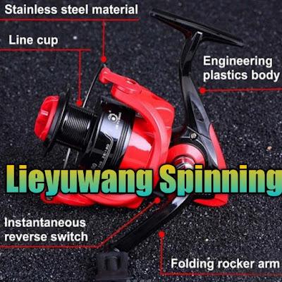 Reel pancing Lieyuwang FD 4000 12 ball bearing murah