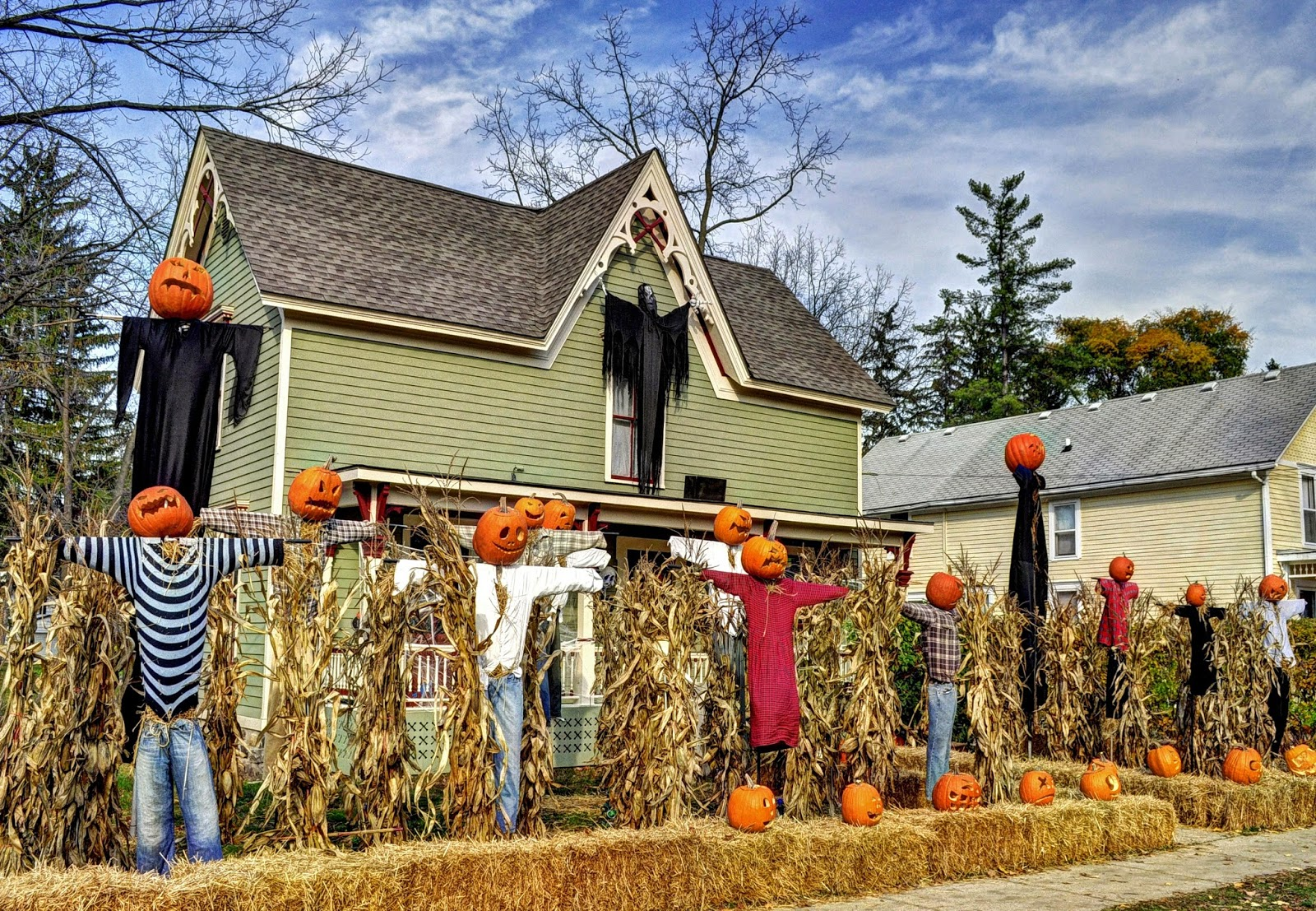 Pumpkin Corn Field Yard Display