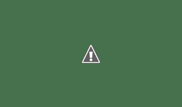 Best Electric Screwdrivers in India : 5 Best Screw drivers in India