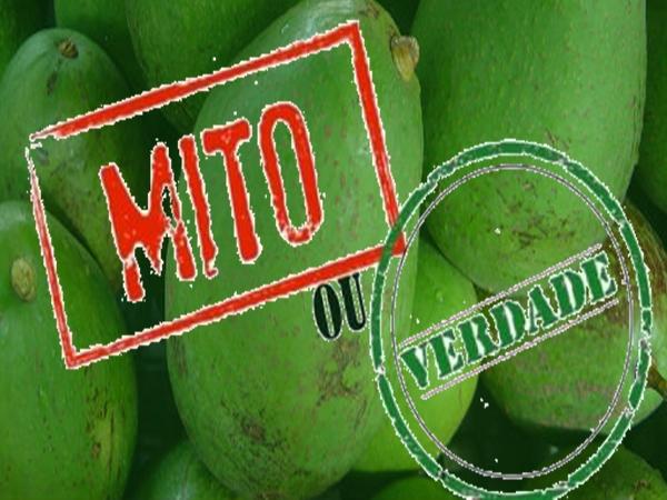 Mitos & verdades sobre o abacate