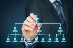 Sukses Besar, Inilah Struktur Organisasi Mayora yang Dipenuhi Orang-Orang Hebat