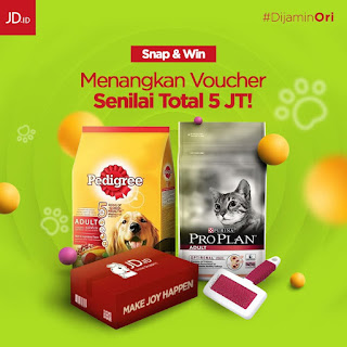 Kontes Snap And Win JD id
