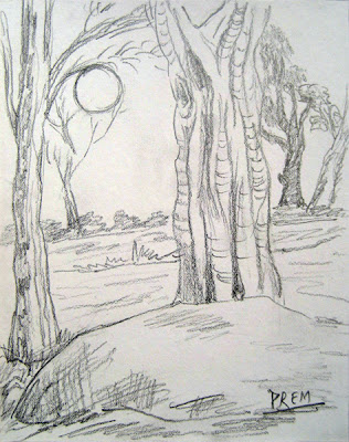 Simple sketch of Trees