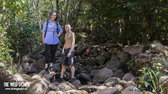 Wanderung durch die Wildnis, rauf auf den Tafelberg in Kapstadt