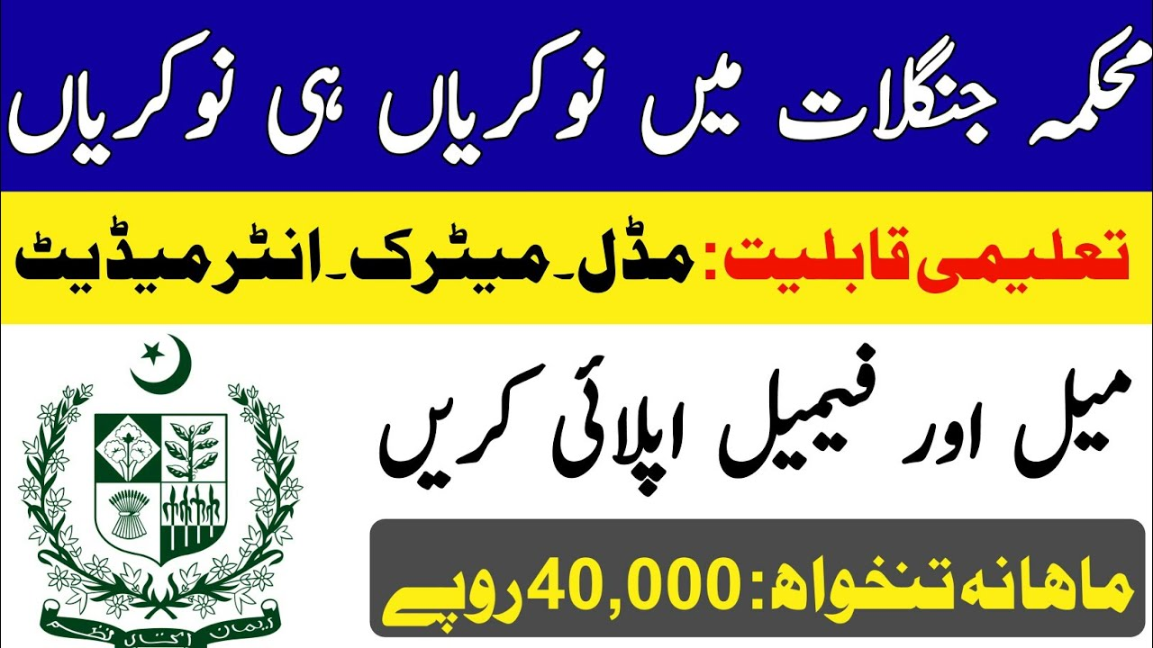 forest department is the common department which lies in each and every province and the forest department is held responsible to look after all the forestry system and growth of plants and trees. Forest Department Jobs 2020 Apply Online