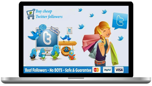 Real Twitter Followers No Bots