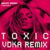 Britney Spears - Toxic (VDKA Remix)