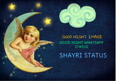 Good Night Shayari With Images