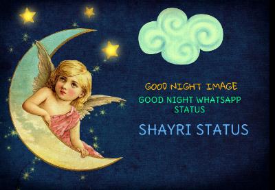 Good Night Shayari With Image In Hindi