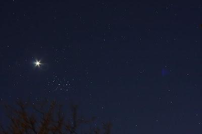 Venus east of the Pleiades