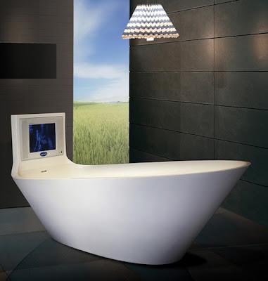 Tina de baño lujosa con TV.